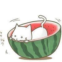 annie_lufangqun